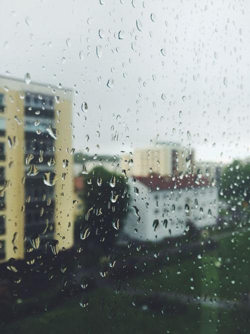 Regn mot ruta